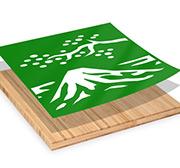 Plywerk Gift Certificate